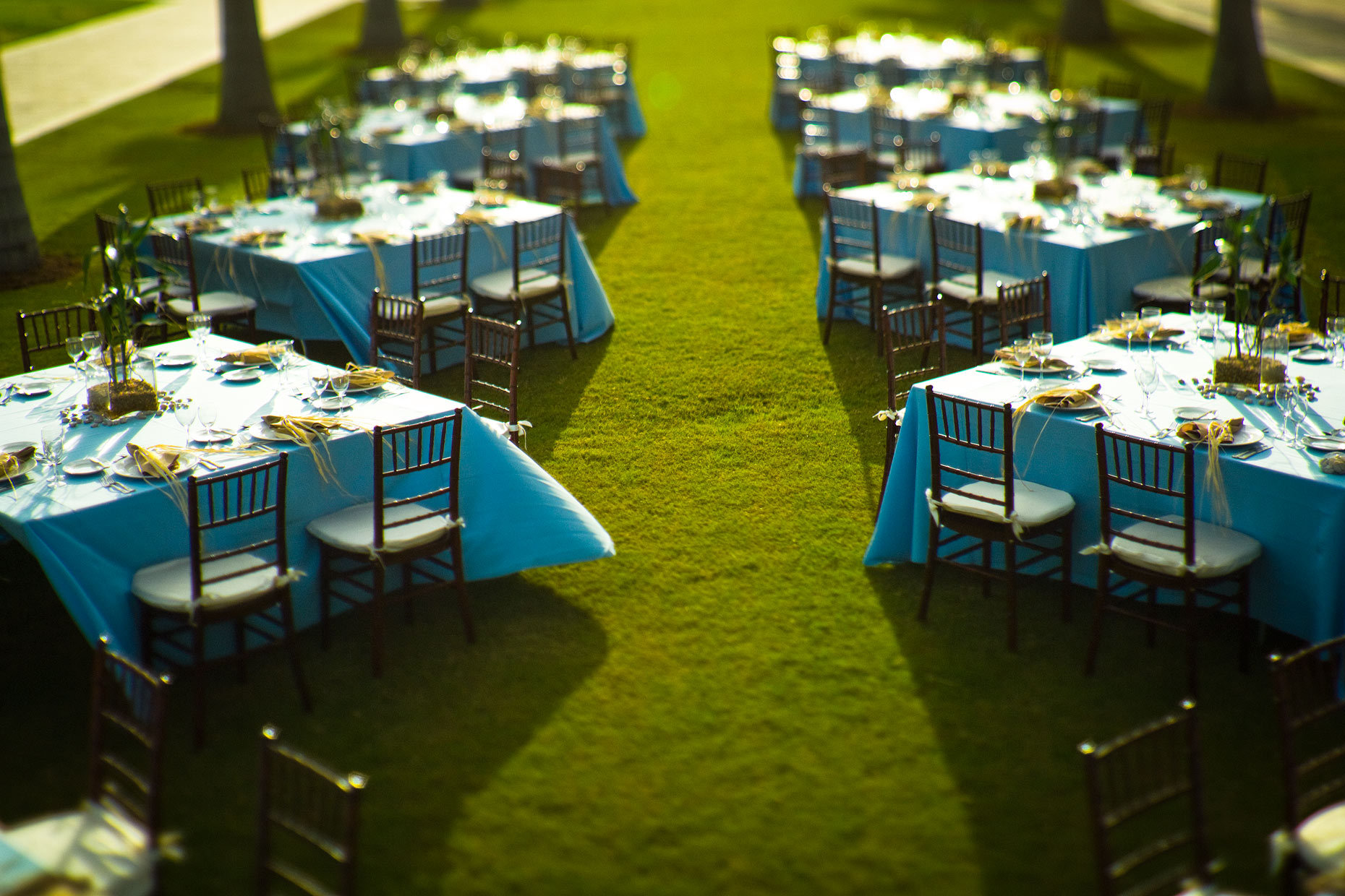34-Royal-Palm-Lawn-Setup0556
